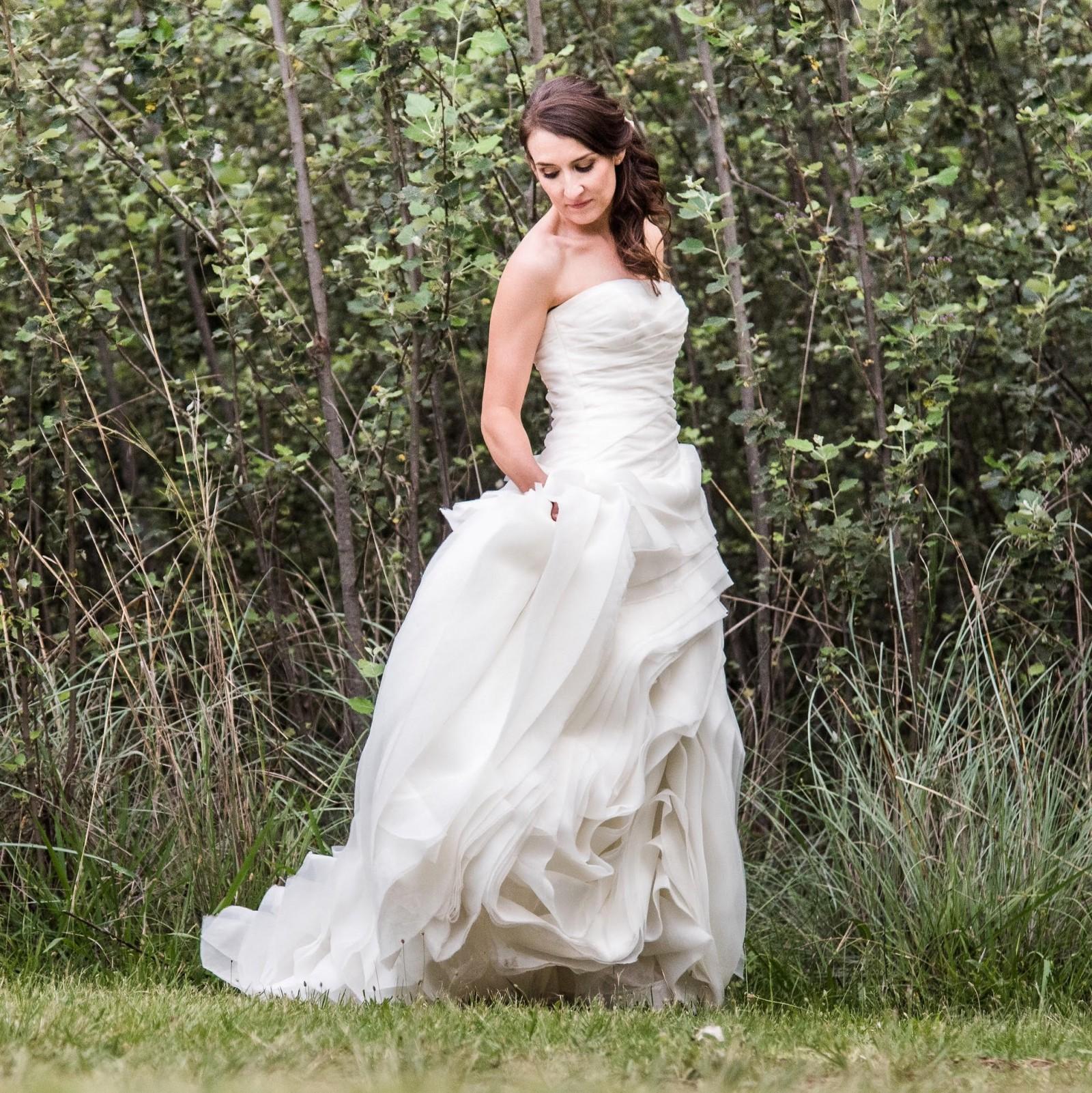Vera wang organza trumpet wedding dress used wedding for Vera wang trumpet wedding dresses