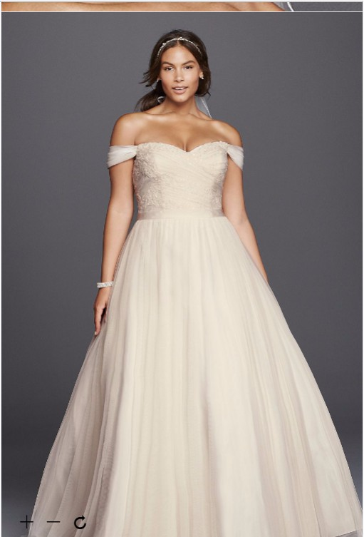 David\'s Bridal Beaded Lace Sweetheart Plus Size Dress (9WG3785 ...