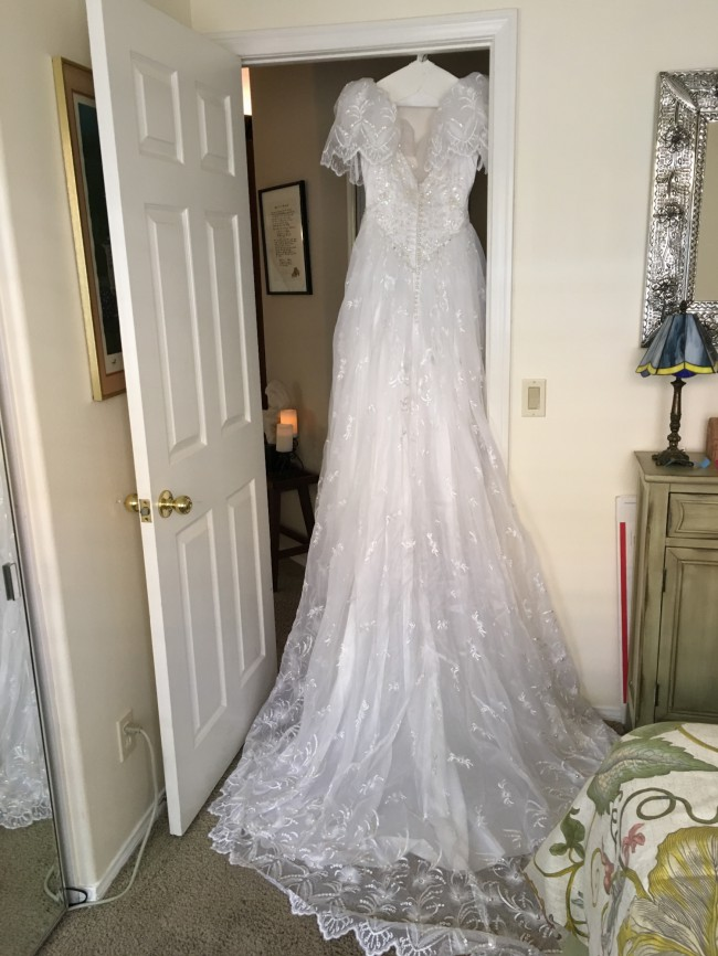 Eva Haynal Forsyth Custom Dress Preowned Wedding Dress On Sale