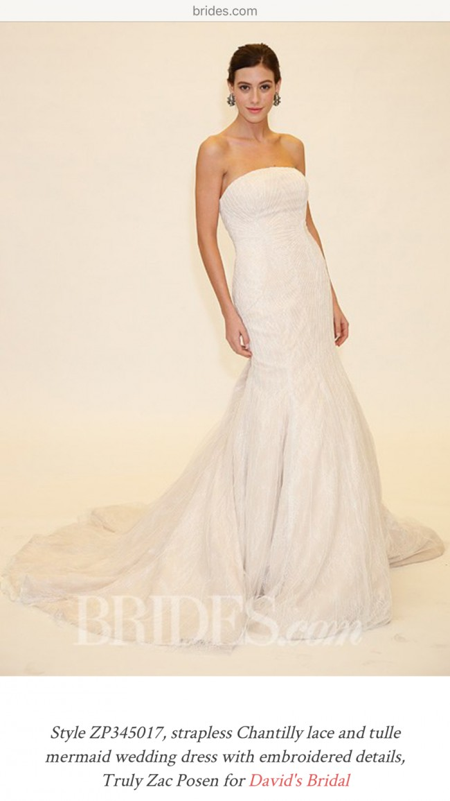 Truly Zac Posen zp345017 New Wedding Dress on Sale 71% Off