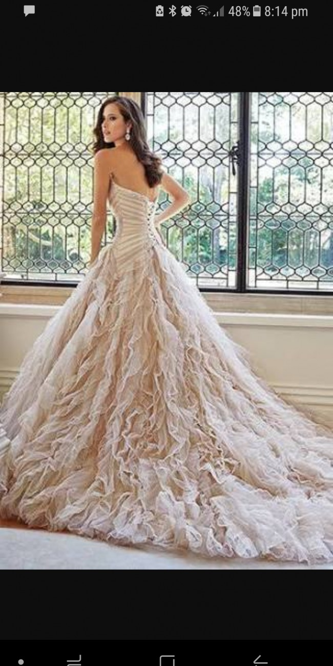 Sophia Tolli Marlene Second Hand Wedding Dress on Sale